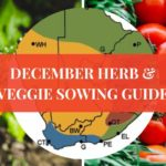 interactive regional sowing guide